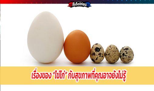 """เรื่องของ """"ไข่ไก่"""" กับสุขภาพที่คุณอาจยังไม่รู้"""