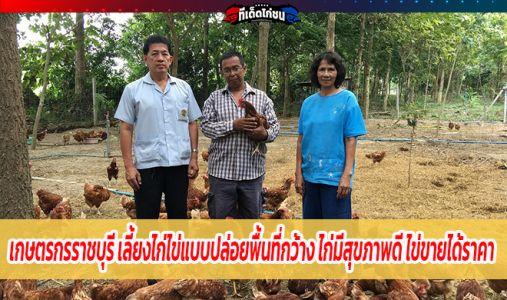 เกษตรกรราชบุรี เลี้ยงไก่ไข่แบบปล่อยพื้นที่กว้าง ไก่มีสุขภาพดี ไข่ขายได้ราคา